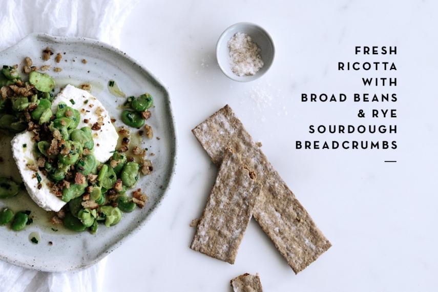Fresh+Ricotta+with+Broad+Beans+%26+Rye+Sourdough+Breadcrumbs++%7C++Gather+%26+Feast