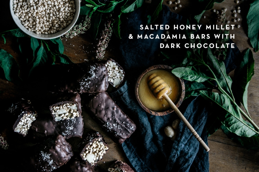 Salted+Honey+Millet+%26+Macadamia+Bars+with+Dark+Chocolate++%7C++Gather+%26+Feast